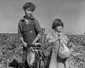 Children working in Nebraska fields, 1940