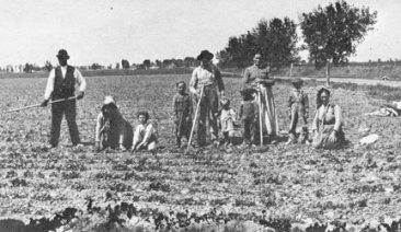 A German-Russian sugar beet worker family