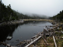 lake tear of the clouds