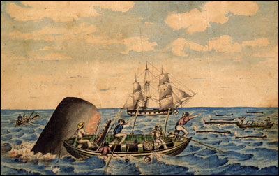 Ahab's Historicism: Changing Whale Behavior in History – The