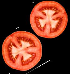 _0019_Tomato-R